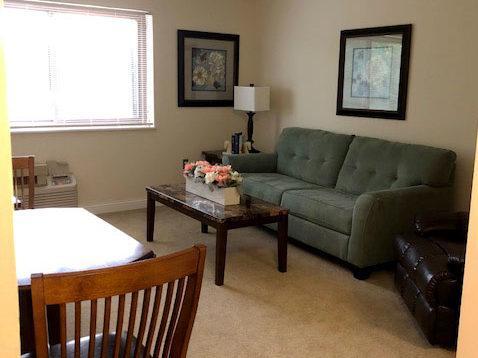Living-Room-Elderly-Apartment-Independent